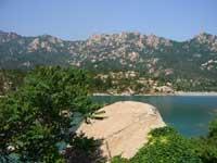 Qingdaos