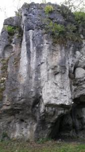 hohler-stein