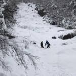 Kühtaibacherl-Eisfall bei Ochsengarten (3 bis 4 Seillängen, WI 3) - Schöner, leichter Eisfall, bei hoher Schneelage muss man das Eis suchen