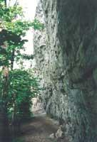 Bohlenwand